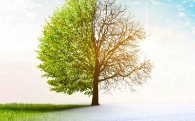 Der Wind der Veränderung